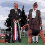Stevie Airedale Champion Dog